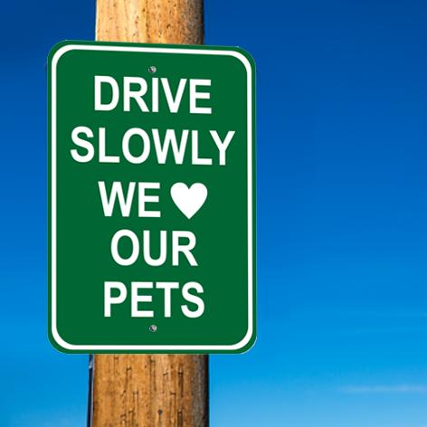 Pet Signs