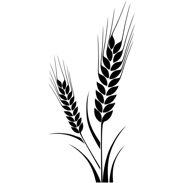 Corn Stalk Craft Stamp