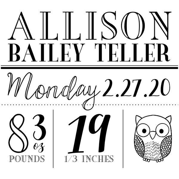 Custom Owl Baby Announcement Craft Stamp