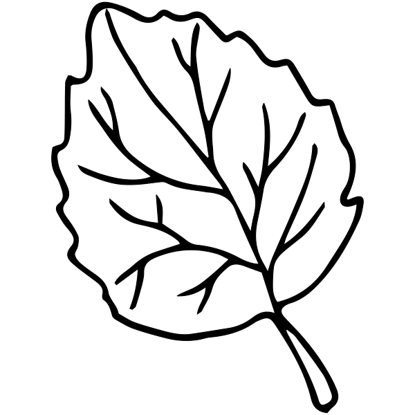 Elm Leaf Outline Stamp