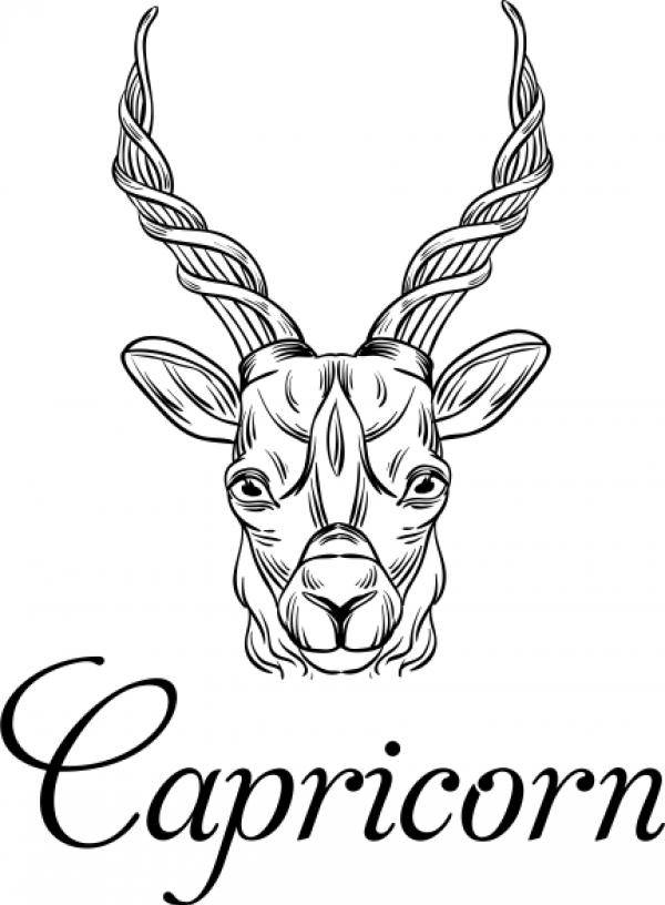 Modern Capricorn Illustration Hand Stamp