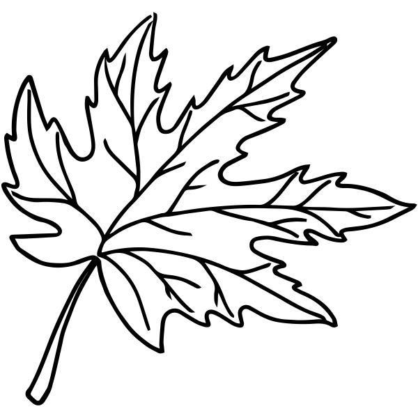 Maple Leaf Outline Stamp