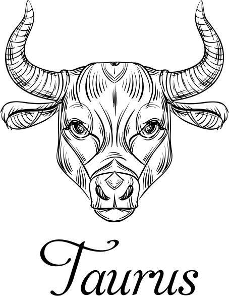 Modern Taurus Illustration Hand Stamp